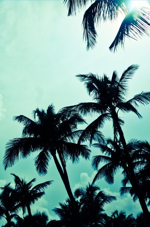 Summer tumblr image 790129 by alroz on for Tumblr photography summer beach