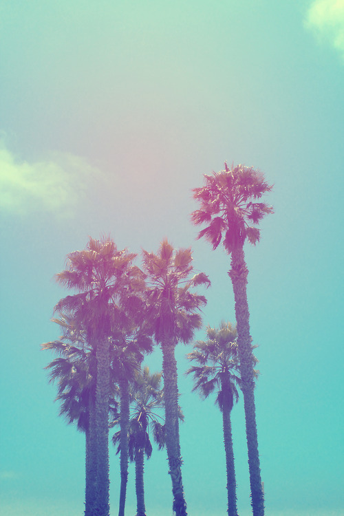 I want stay here via tumblr image 792795 by marco ab for Tumblr photography summer beach