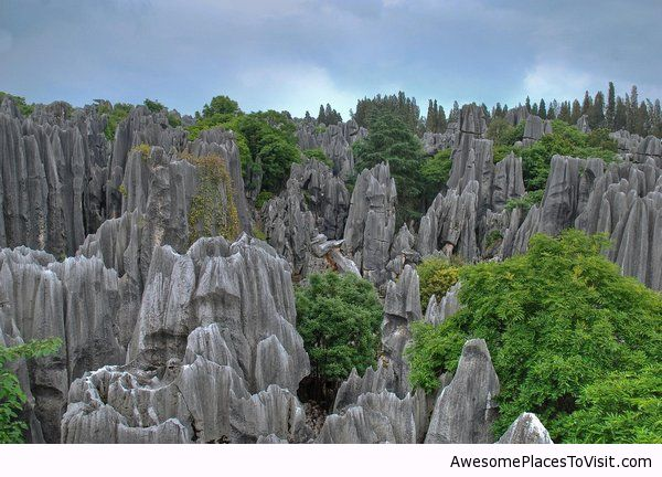 Forest stone china awesome place to visit image for Awesome places to vacation