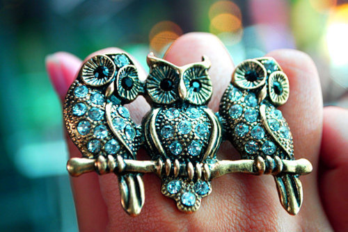 owl, owl ring, photography and ring