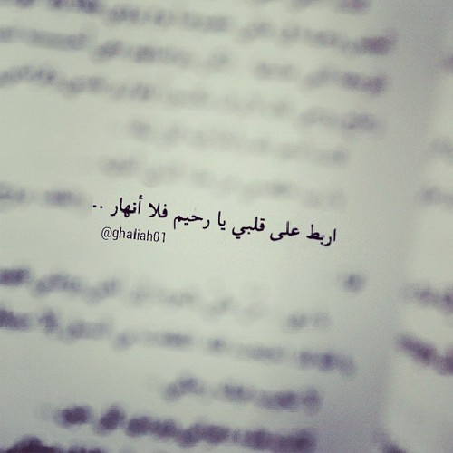 Quotes About Love In Arabic : Beautiful Quotes In Arabic. QuotesGram