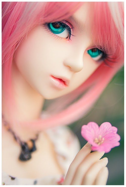 cute, doll, love, rose, pink