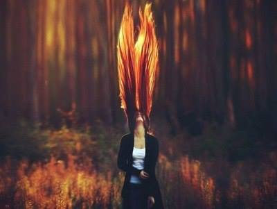 sun, fire, flame, heat, fox, love, red hair, nature, autumn, hair, style
