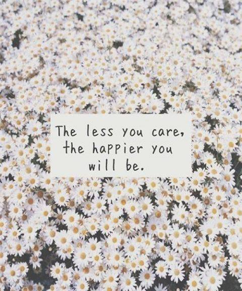 camomile, you, care, the, daisy, flowers, happy, love life and love!!!:):), less, don't care, lovely, quote, nice, quotes, words, text, less you care, happier you will be