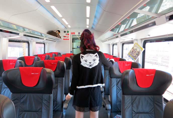cat sweater, travel bloggers, backpackers and eurail train