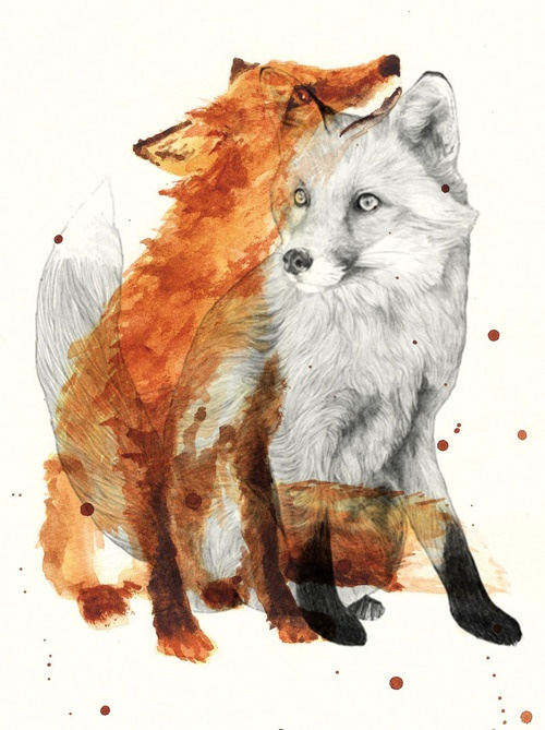 drawing, art, awesome, fox, painting, creative