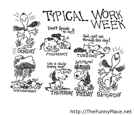 Typical Work Week Funny Pictures Awesome Pictures Image