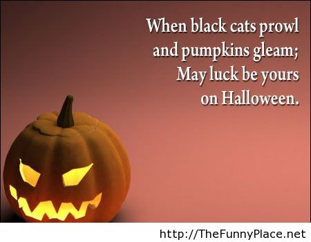 Halloween Quotes With Pumpkins Funny Pictures Awesome