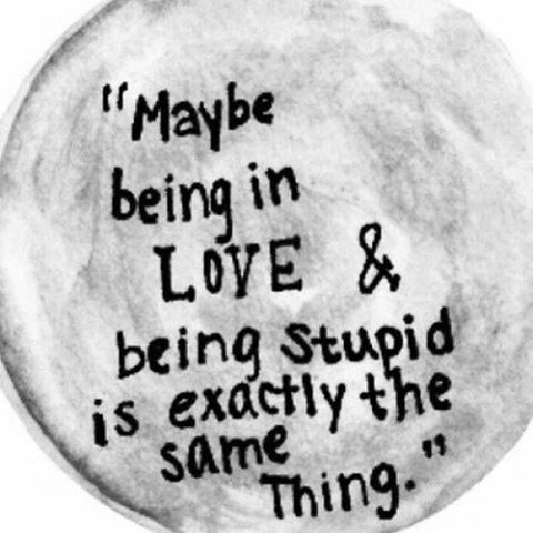 Funny Quotes On Stupid Love : ... love, post, quote, quotes, relationship, story, stupid, text, true