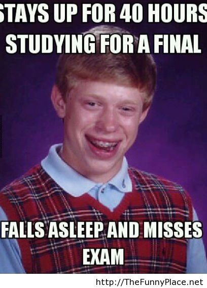 funny, funny animals, funny comics, funny kids, funny pics, funny ... Studying For Finals Funny