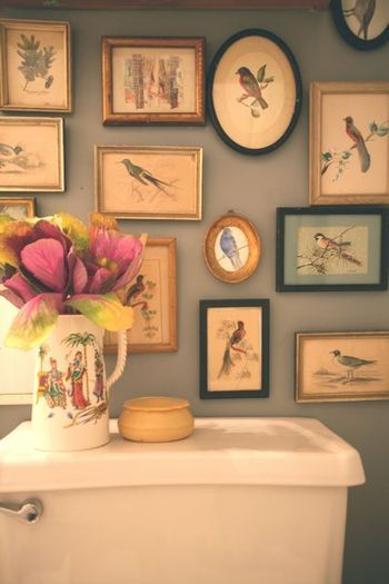 bird, flowers, frames and nature