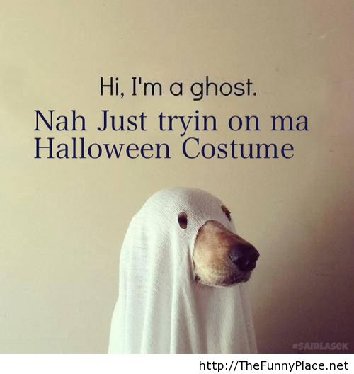 Ghost Halloween Costume With A Dog Funny Image 1016521