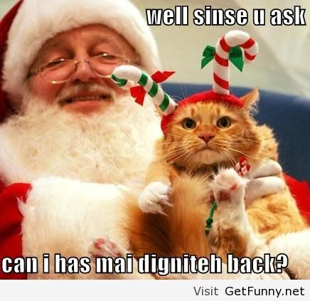 Image result for Funny animated christmas animals