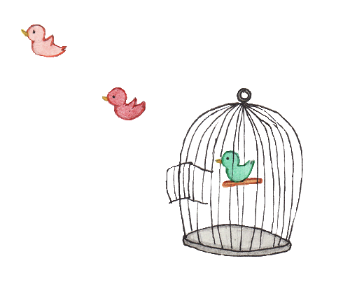 pajaritos, transparent, overlays, tumblr, transparents, overlay, png