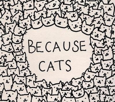 cat lovers, cats, i love cats and love