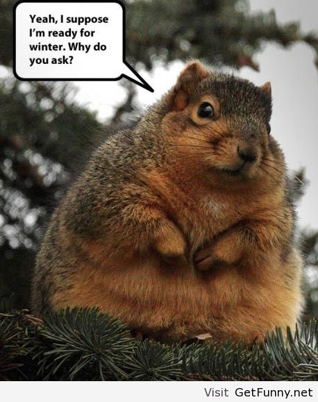 Funny Quotes About Winter Weather. QuotesGram