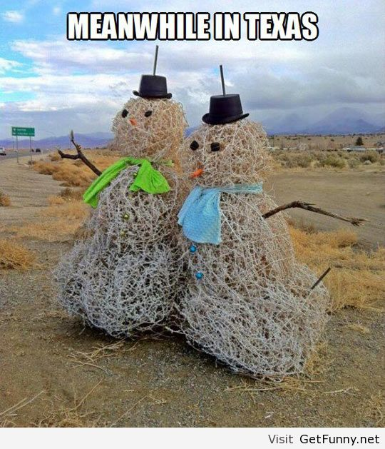 funny christmas, funny jokes, funny quotes and funny sayings and quotes