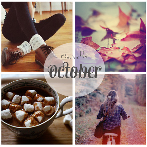autumn, chilly, cuddling and fall