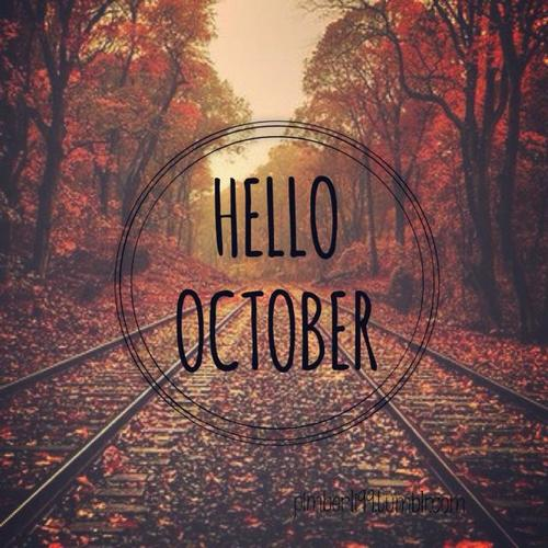 colorfull, cool, fall and hello october