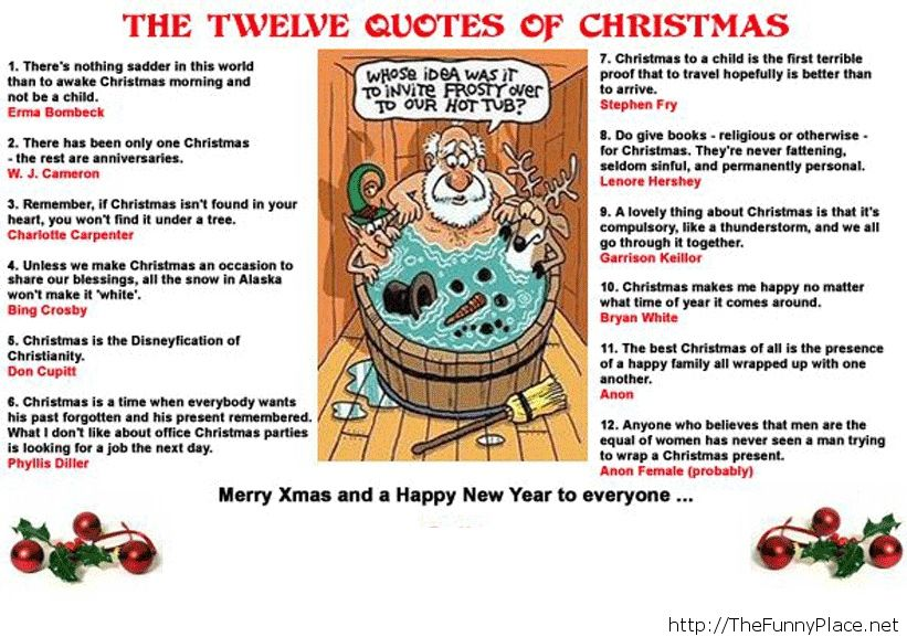 funny Christmas 2013, happy new year 2014, funny 2014, funny sayings 2014, funny quotes, funny quotes and sayings, funny memes, funny conversations, funny messages, funny animals