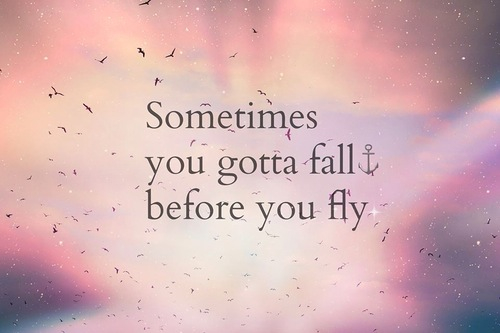fly, inspirational, life quotes, love, pink, quotes, wild