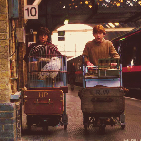 baggage, childhood, harry potter, magic, ron weasley, train station