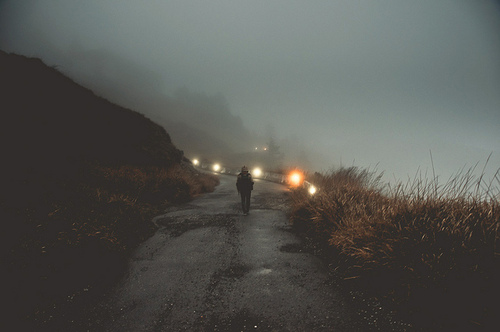 trees, night, fog, dreamy, landscape, eerie, indie, road