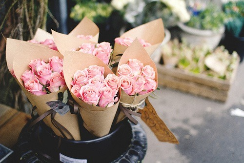 2013, cute, fashion, flower, flowers, haha, nature, nice, pink, pink roses, popular, rose, roses, sweet, tumblr