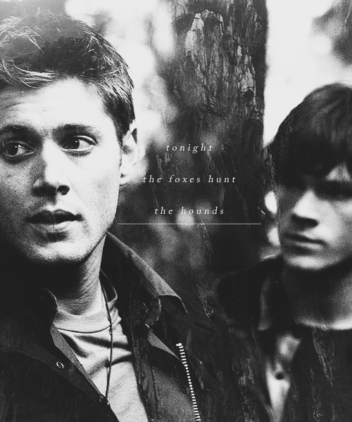 brothers, dean, dog, fox, hunt, sam, supernatural, winchester